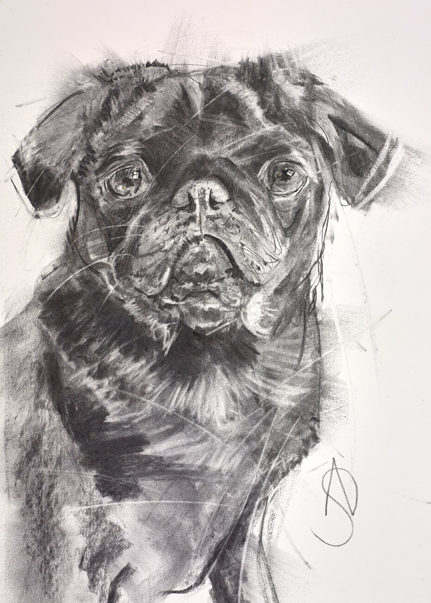 Puppy Eyes by april shepherd -  sized 14x20 inches. Available from Whitewall Galleries